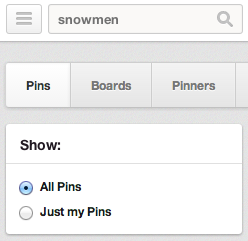 Pinterest Search Box