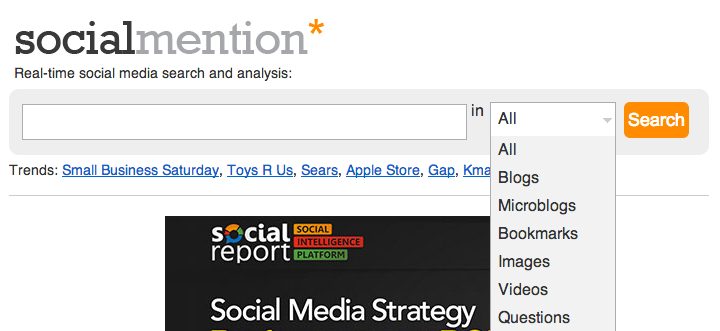 Social Mention Search Bar
